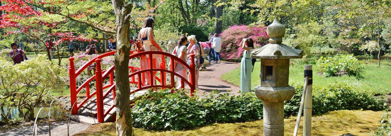 The Den Haag Japanese Garden