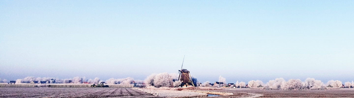 Today: The Netherlands Transforms into Frosty Landscape