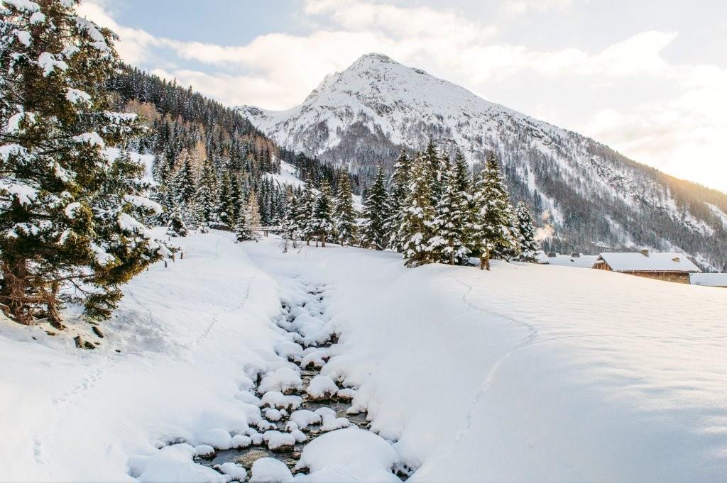 Animal tracks near a brook in Hohe Tauern National Park