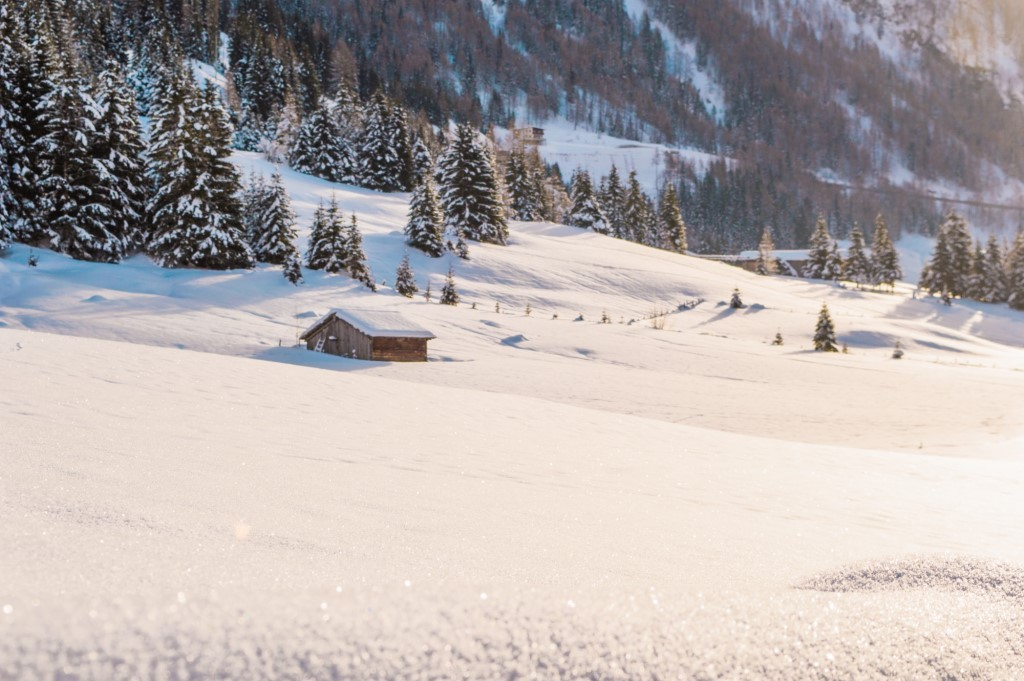 Untouched snow in East Tyrol