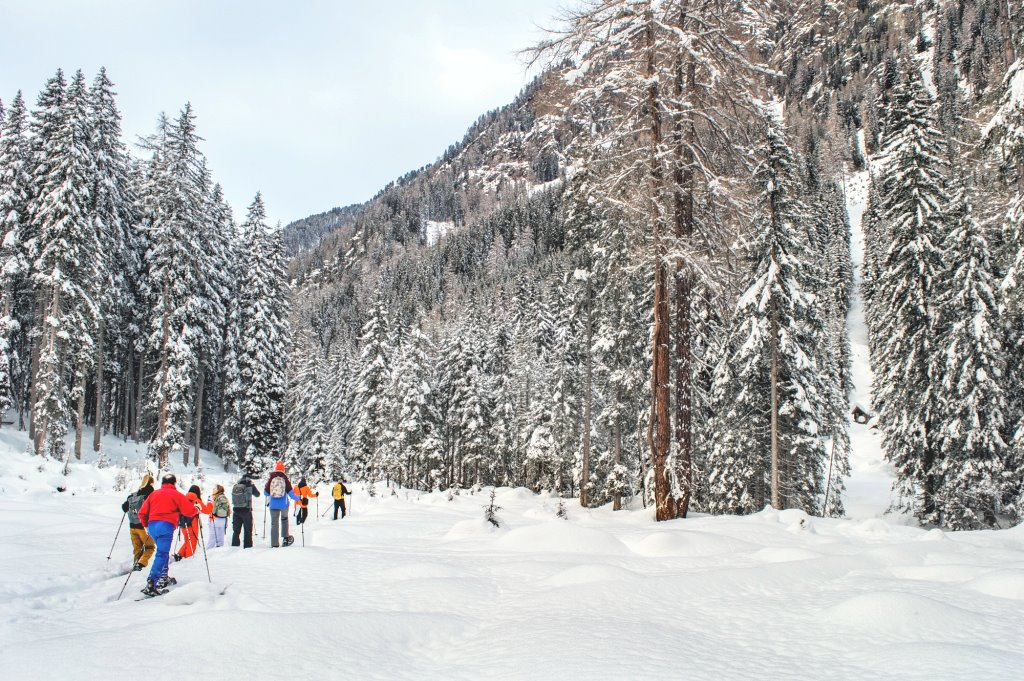 Snow hiking in the forests of Hohe Tauern