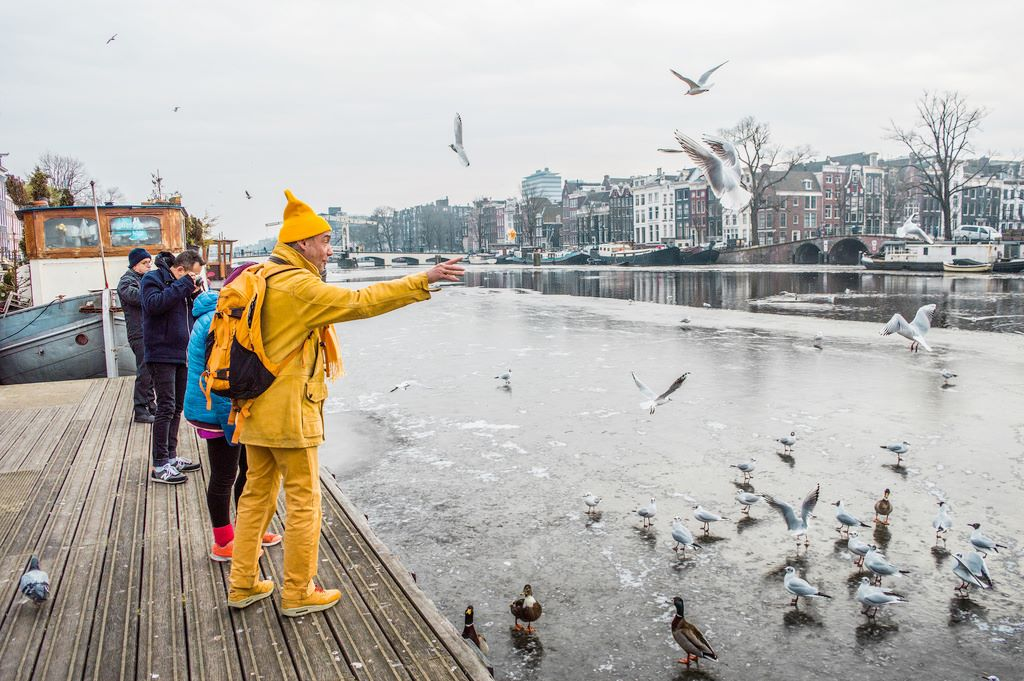 Feeding birds during Amsterdam winter time