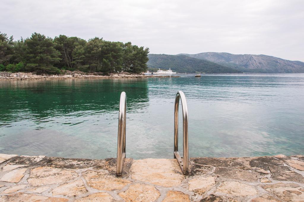 A little ladder leads into the sea near Stari Grad, Croatia