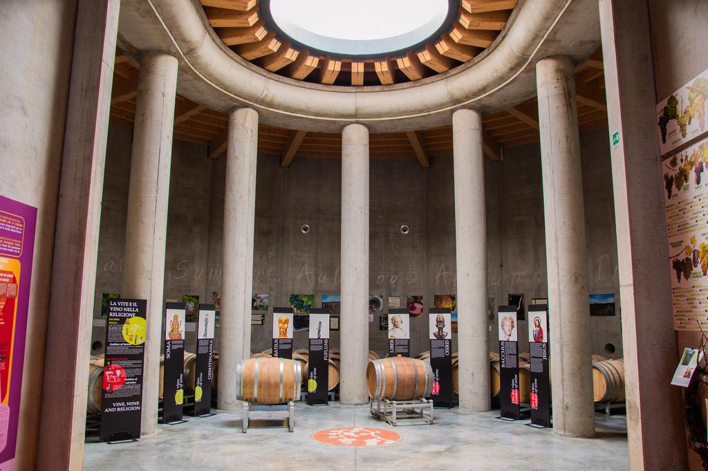 Inside the Guado al Melo winery