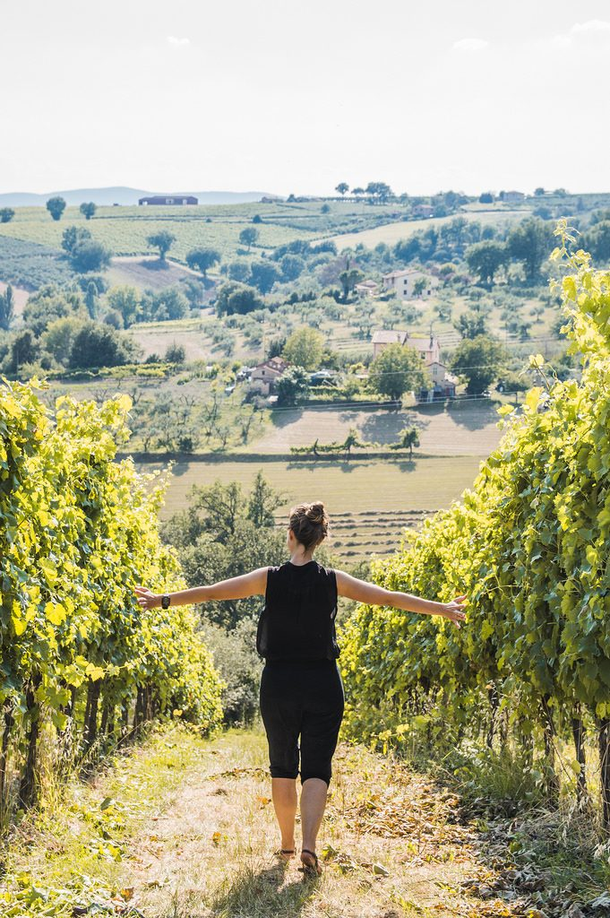 A girl walks in the middle of a vineyard in Umbria