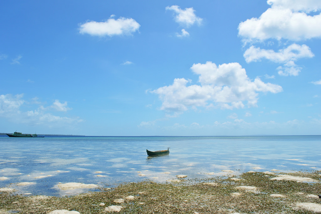 Hoga Island in Indonesia is part of Wakatobi National Park.