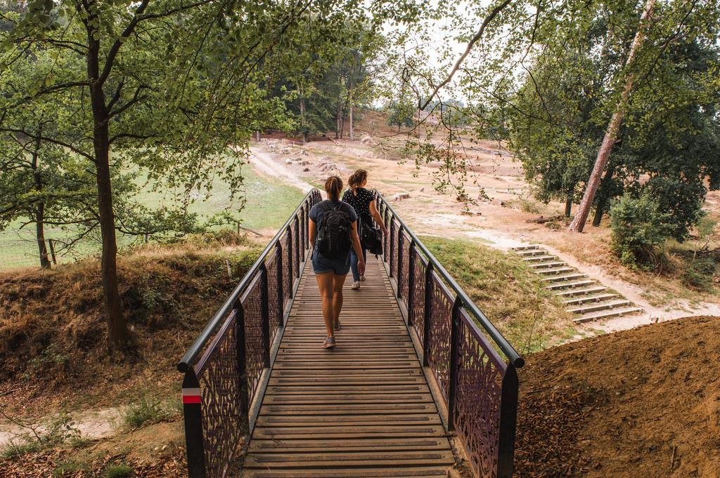 Hiking trail at Veluwezoom