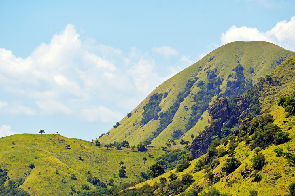 Landscape in Komodo National Park