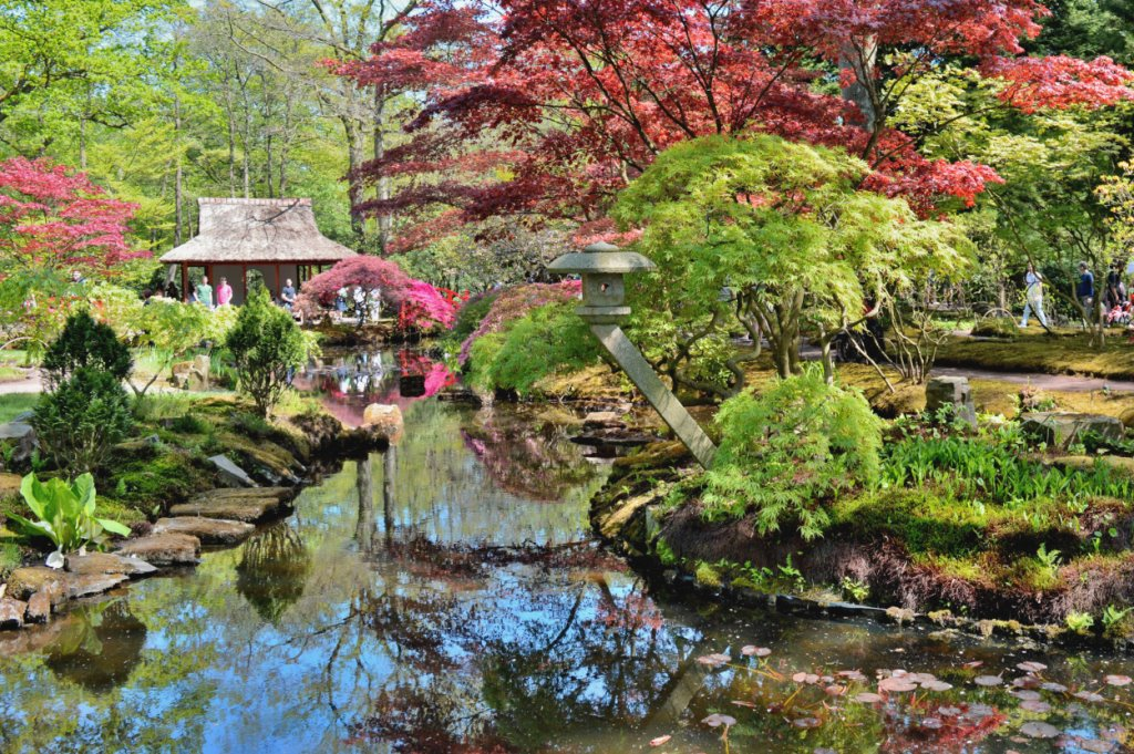 An overview of the Japanese Garden in The Hague