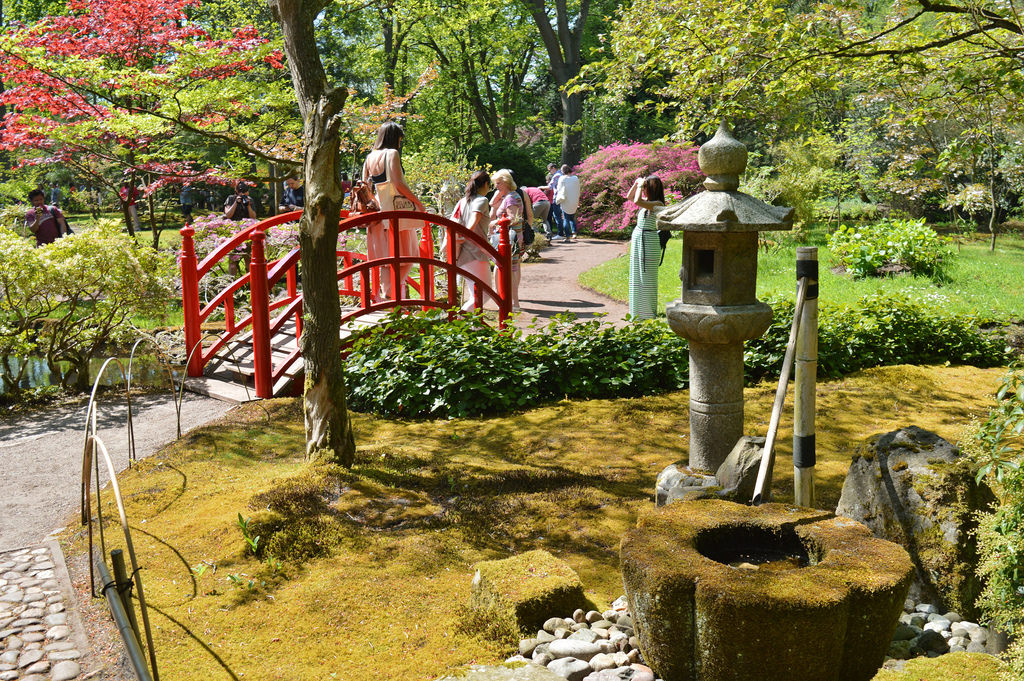 Visiting the Japanese garden in The Hague