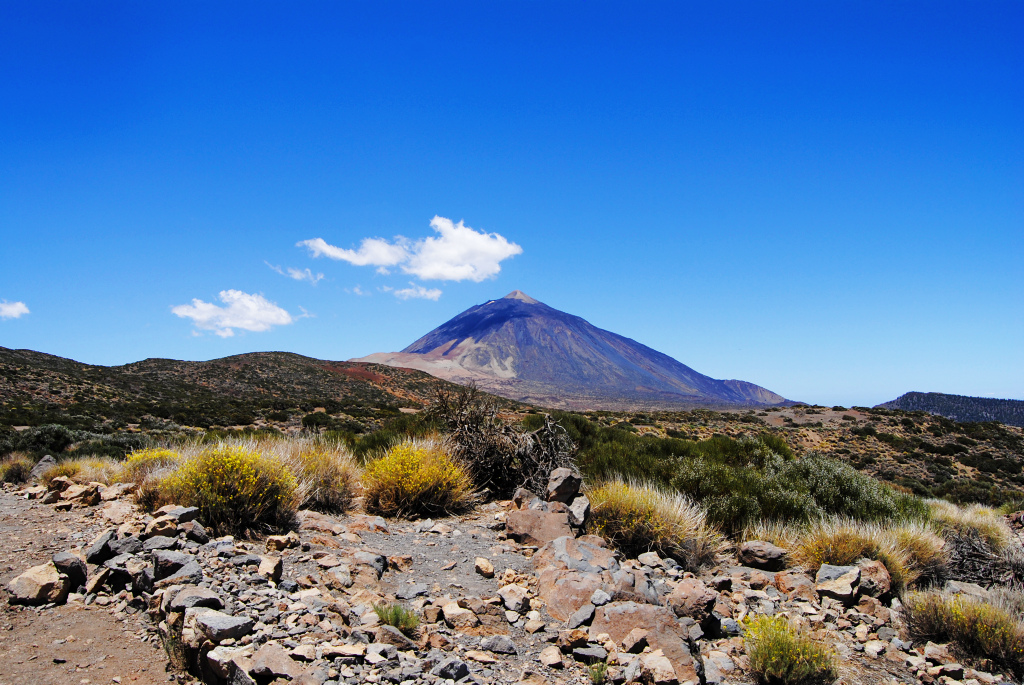 Tenerife national park Teide (Pico del Teide)