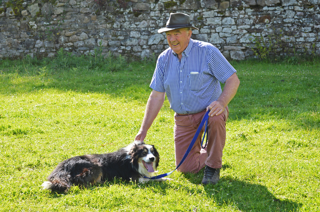 Irish farmer and his sheep dog