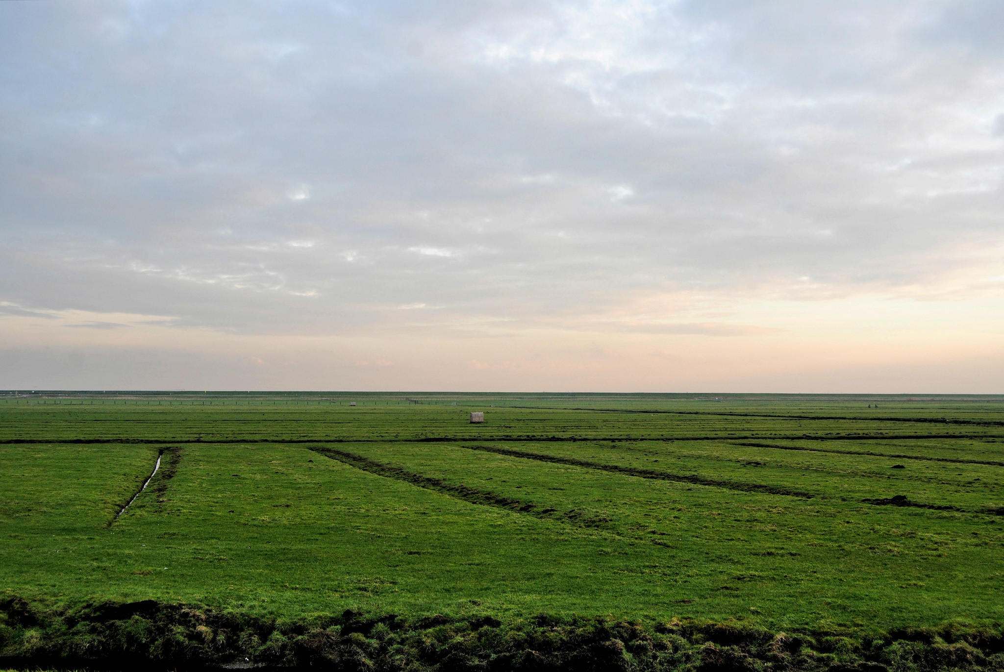 Waterland in Holland, a flat, empty and grassy landscape.