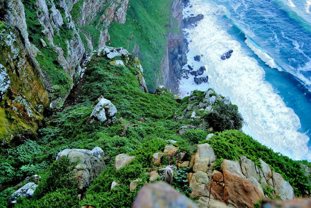 Cape Point in South Africa, looking down a cliff.