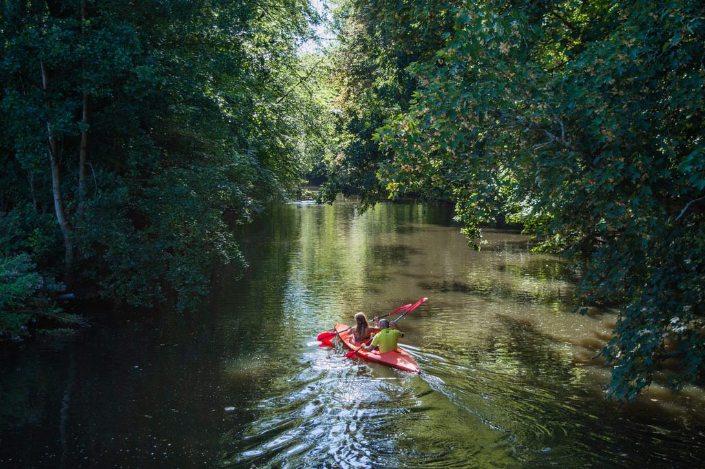 Canoeing in the Amsterdamse Bos, a lush green forest in the Netherlands with interconnected ponds and lakes.