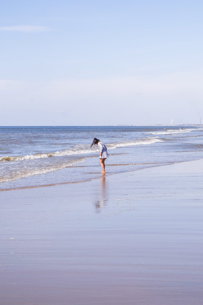 Go on a daytrip from Amsterdam to the Beach to enjoy the fresh water of the North Sea in summer