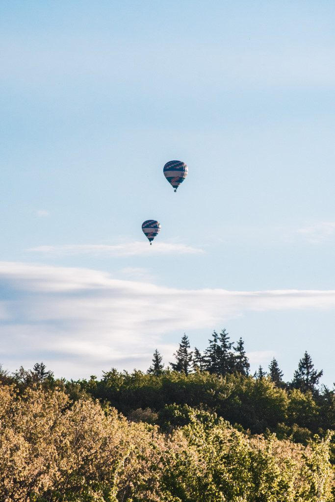 Two hot air balloons floating above the trees in Moravia
