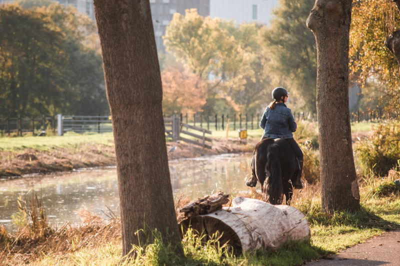 A woman riding a horse by the Amstel river, with autumnal trees in the background.