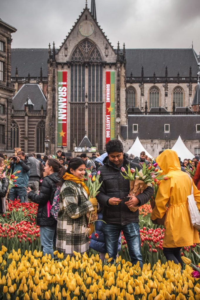 A couple happily pick tulips on Dam Square during National Tulip Day