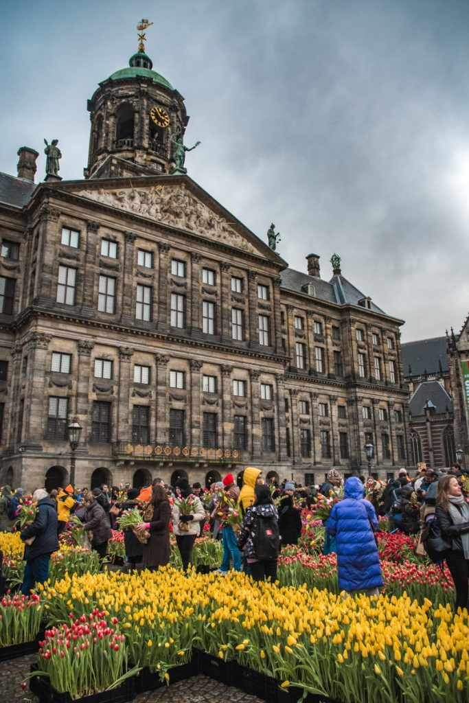 National Tulip Day on Dam Square in 2020